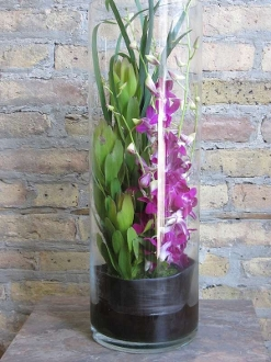 Dendrobium Orchids In Glass Cylinder